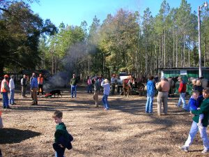 Pine Hill Plantation Activities
