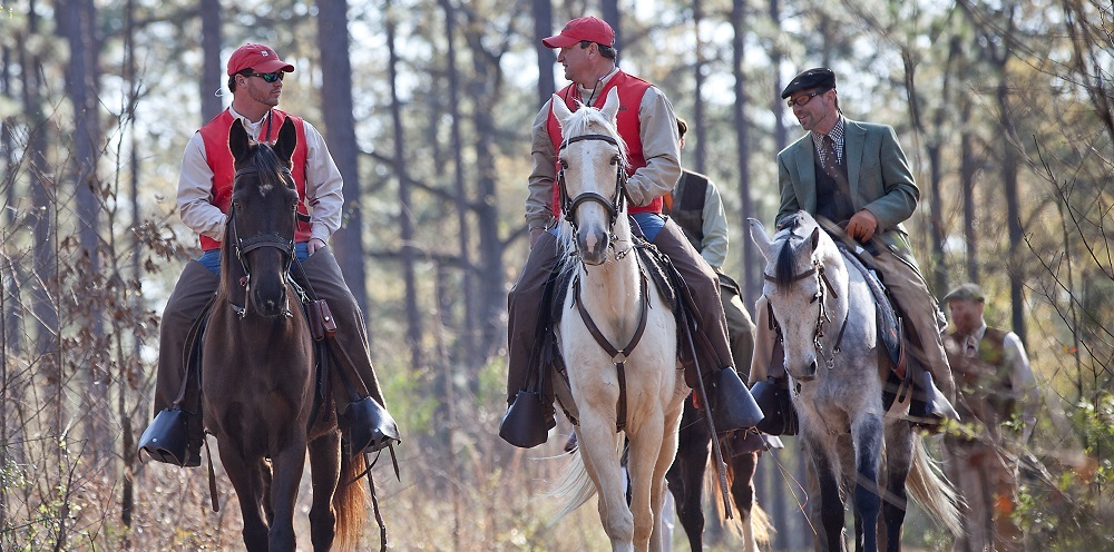 Private Group Slider – horse riders